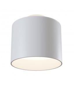 Ceiling Lamp Technical C009CW-L12W
