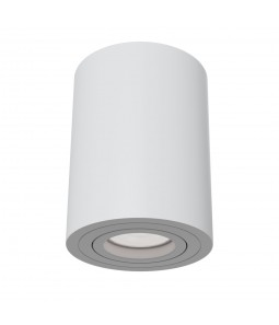 Ceiling Lamp Technical C016CL-01W