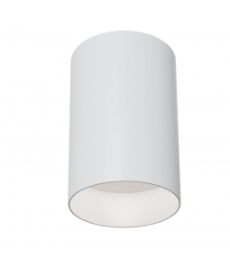 Ceiling Lamp Technical C014CL-01W
