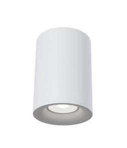 Ceiling Lamp Technical C012CL-01W